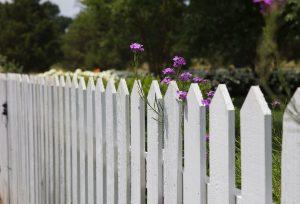barriere-fleur